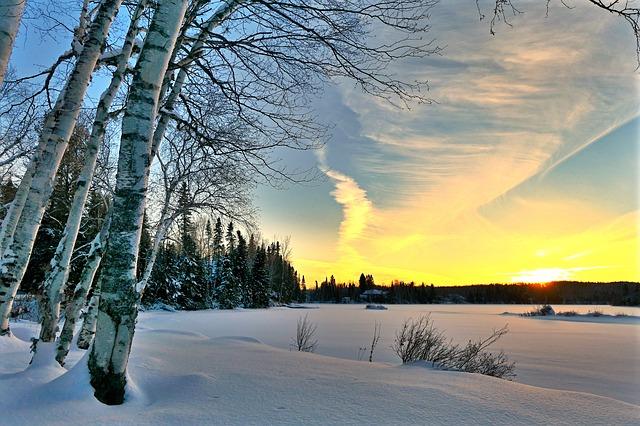 paysage canadien